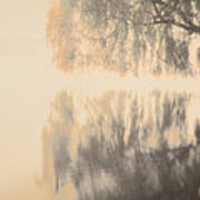 Weeping Willow Woman Poster