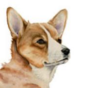 Welsh Corgi Dog Painting Poster