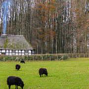 Welsh Farmhouse Poster