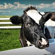 West Michigan Dairy Cow Poster