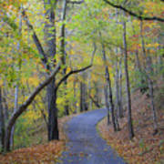 West Virginia Fall Scene Poster