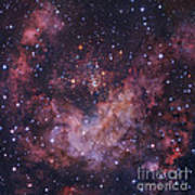 Westerlund 2 Star Cluster In Carina Poster