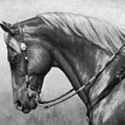 Western Horse Black And White Poster