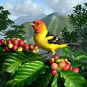 Western Tanager Poster by Jerry LoFaro