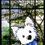 Westie At Dogwood Window Poster