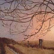 Wet Spring Soft Sunset  Poster