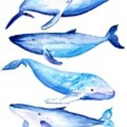 Whale Friends Poster