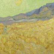Wheat Field With Reaper At Wheat Fields Van Gogh Series, By Vincent Van Gogh Poster