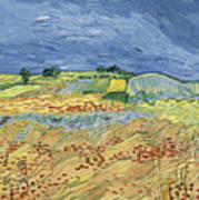 Wheat Field With Stormy Sky Poster