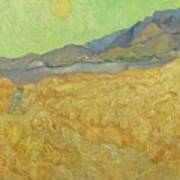 Wheatfield With A Reaper Saint-remy-de-provence, September 1889 Vincent Van Gogh 1853 - 1890 Poster