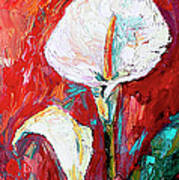 White Calla Lilies Oil Painting Poster
