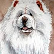 White Chow Chow Poster