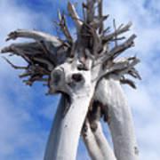 White Desert Tree Poster