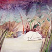 White Doe Dreaming Poster