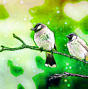 White-eared Bulbul - Watercolor Poster