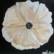 White Flower On Black Poster