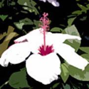 White Flower Work Number 4 Poster