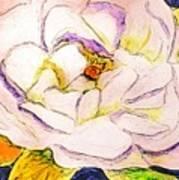 White Gardenia Poster