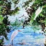 White Herons Poster