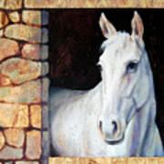 White Horse1 Poster