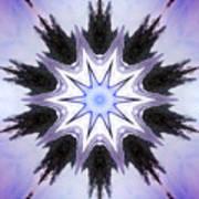 White-lilac-black Flower. Digital Art Poster