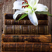 White Lily On Antique Books Poster
