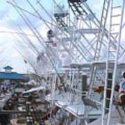White Marlin Open Docks Poster