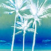 White Palms Poster