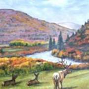 White River Poster