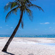 White Sand Beaches And Tropical Blue Skies Poster