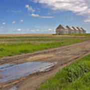 White Sheds On A Prairie Farm In Spring Poster