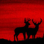 Whitetail Deer At Sunset Poster