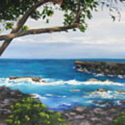 Whittington Beach Park Big Island Hawaii Poster
