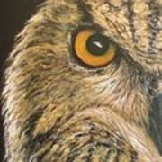 Whooo Goes There Poster