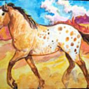 Wild Appaloosa Horse Poster