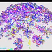Wild Flower Bouquet Poster