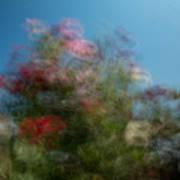 Wild Flowers 1 Poster