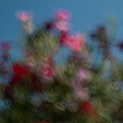 Wild Flowers 2 Poster