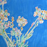 Wild Flowers On Blue Poster