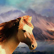 Wild Horse - Painting Poster