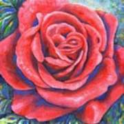 Wild Rose Three Poster