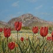 Wild Tulips In Central Crete Poster