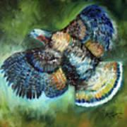 Wild Turkey In Flight Poster