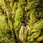 Wilderness Falls Poster