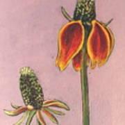 Wildflower 1 Poster
