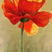 Wildflower 2 Poster