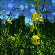 Wildflower Field Poster