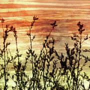 Wildflower Sunrise Poster