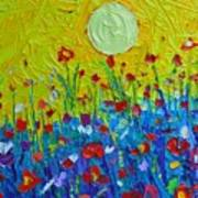 Wildflowers Meadow Sunrise Poster