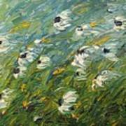 Wind Swept Daisies Poster by Robert Laper